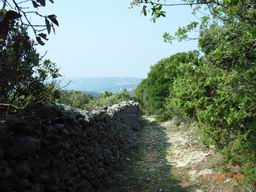 Walking on island Cres - stone walls (gromacha)